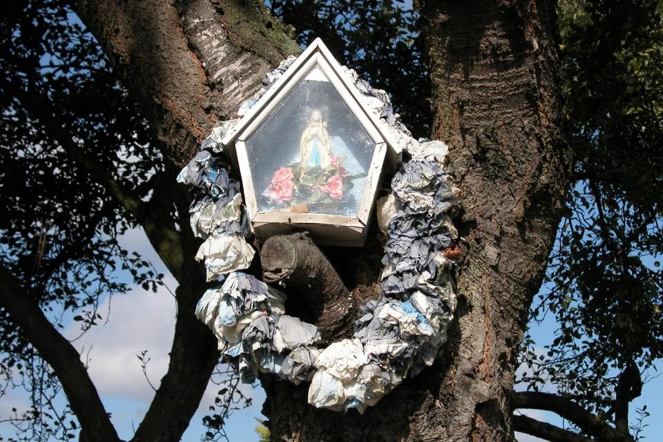 Een boomkapel in Wijnegem. Dorpelingen blijken toch nog heel gehecht aan de kleine gebedsoorden.
