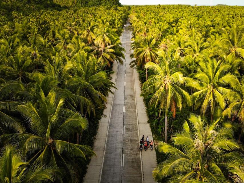 Palm Tree Road op het eiland.