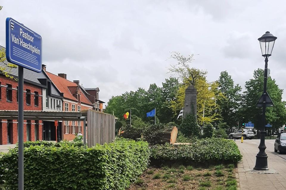 De rode beuk verdween zaterdag uit het Meerhoutse straatbeeld.