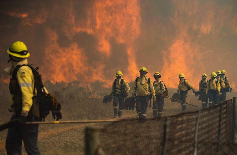 De brandweer krijgt het vuur niet onder controle door de strakke wind.