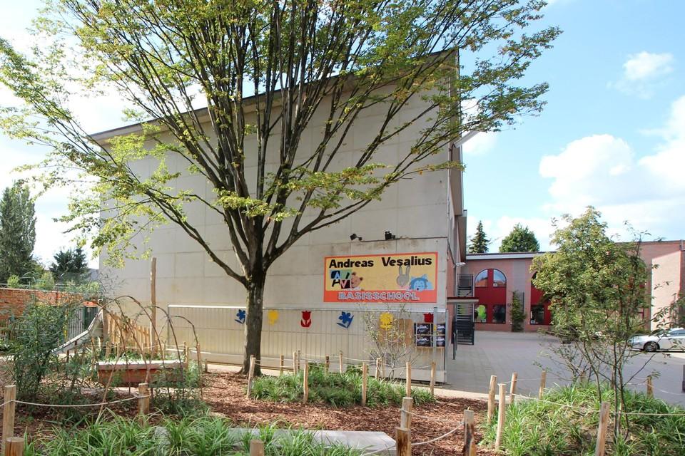 Edegem organiseert een zomerschool in juli en augustus.