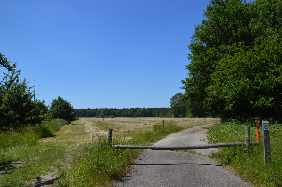 Hier door deze weide aan Sjauwel komen paden voor ruiters, wandelaars en fietsers. Zo kunnen ze van hieruit gemakkelijk 't Boshuisje bereiken.