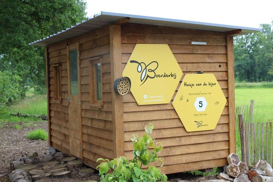 In het houten huisje staan nog grote kasten met ongeveer 50.000 bijen. Die bleven gelukkig onaangeroerd.