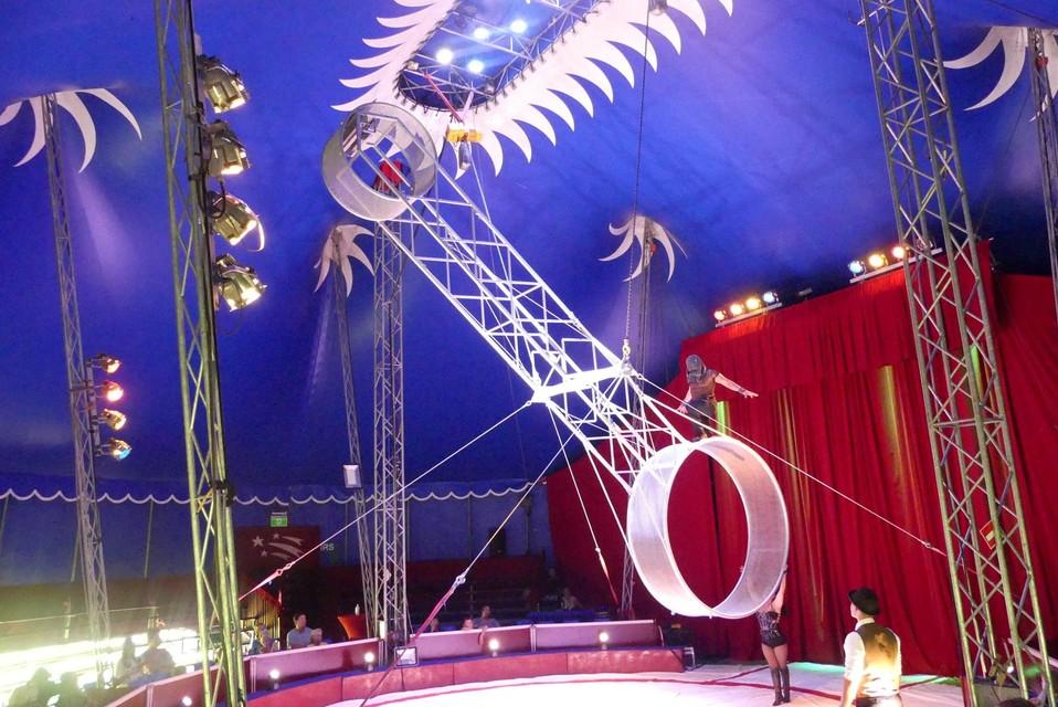 """""""Intussen draait het circus terug vlot, maar in het begin leek het wel of we dit nog nooit gedaan hadden"""", zegt Maria Heppenheimer."""