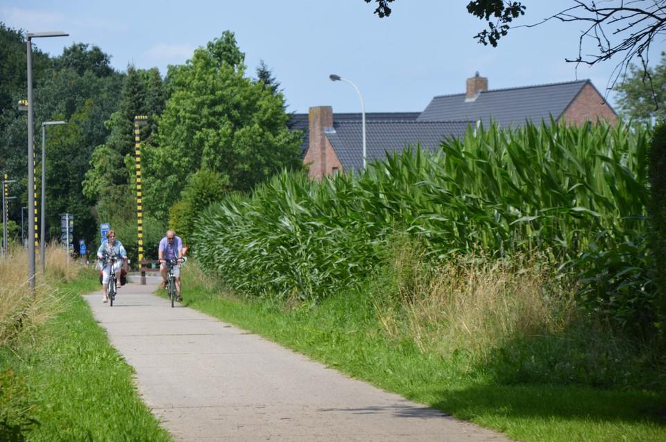 Het fietspad naast het maïsveld, waar zo'n tien jaar geleden het Merovingisch grafveld werd blootgelegd.