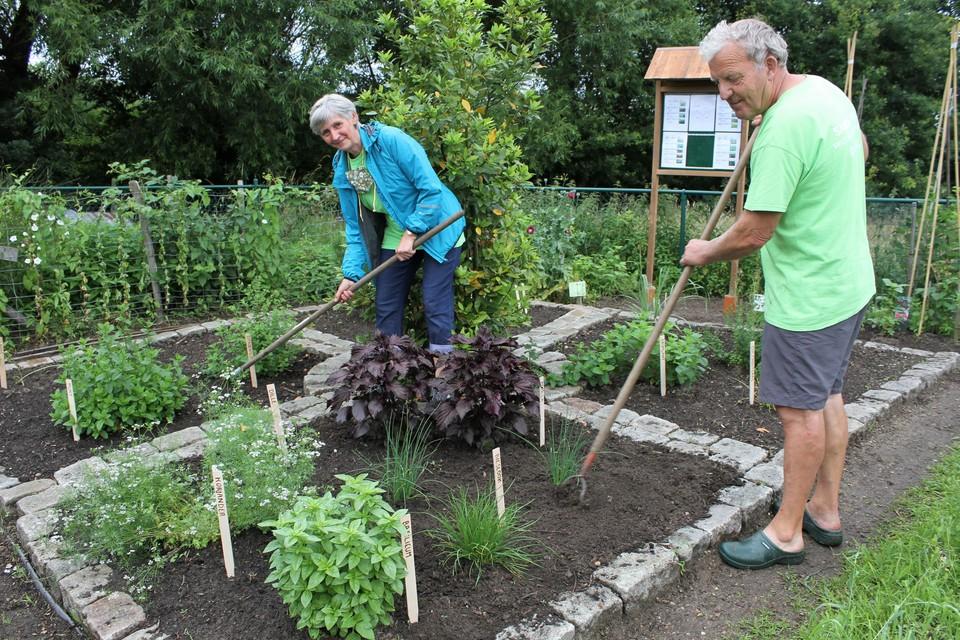 Sigrid Verlinden en Jos Gebruers beheren de kruidentuin.