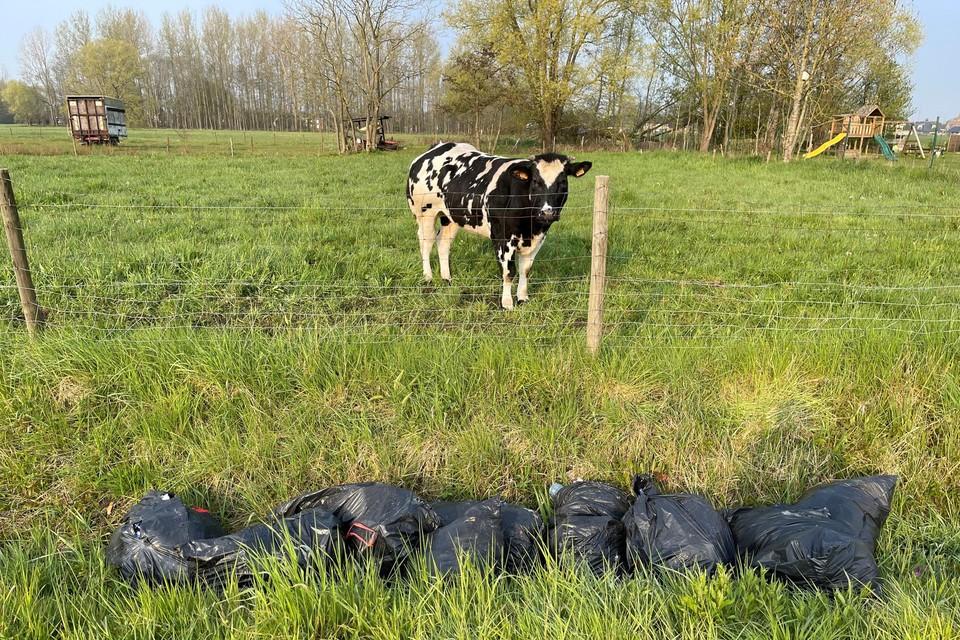 24 vuilniszakken werden in een gracht gedumpt.