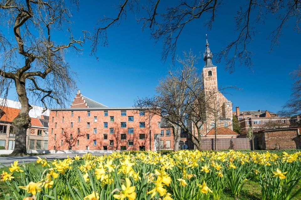 De stad roept de Mechelaars om op mee te werken aan de grootste bloemenweide van de Benelux.