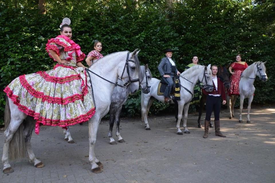 Dancing with Horses tijdens een repetitie in Zandhoven.