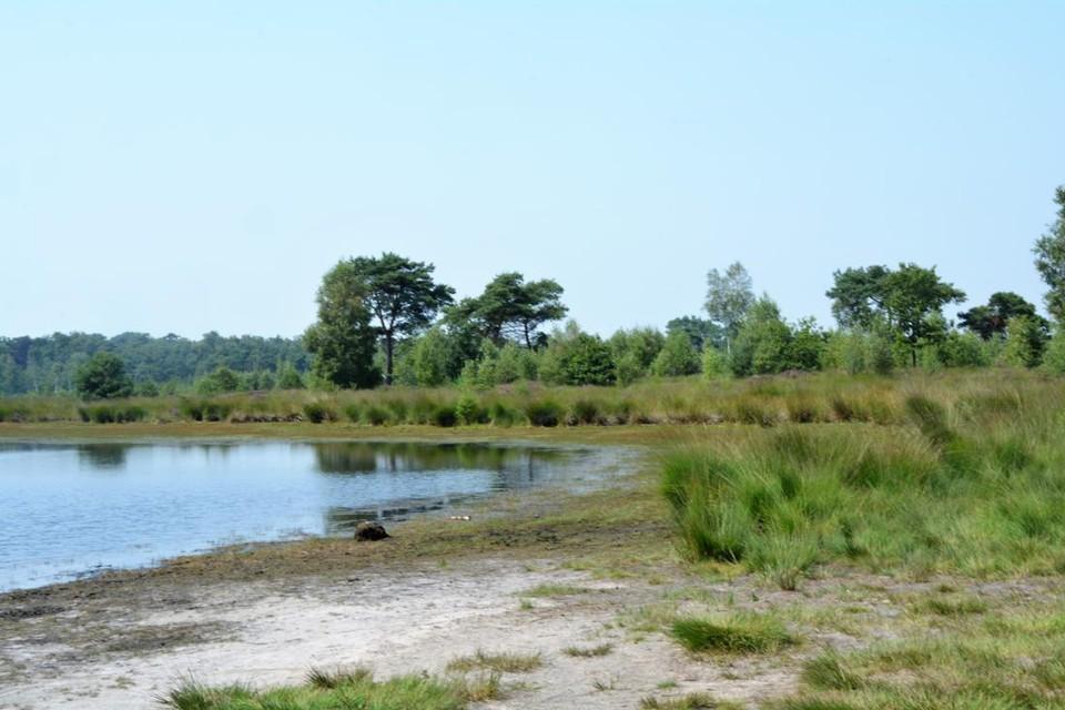 Voor Grenspark Kalmthoutse Heide is het nu afwachten of de kandidatuur als Nationaal Park geselecteerd wordt.