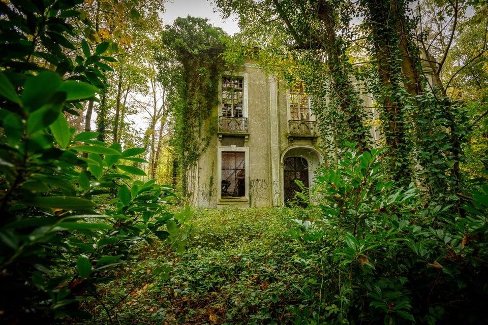 De begroeiing moet van het kasteel een biodiverse ruïne maken.