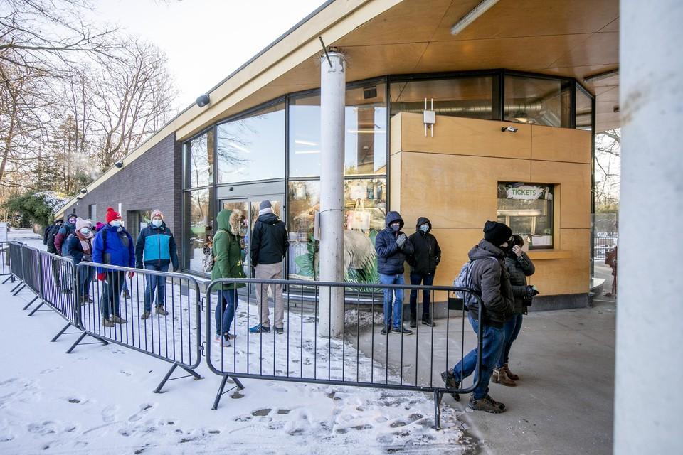 De diehard Planckendael-fans staan zaterdagochtend om 9u bij -7 graden te wachten tot ze eindelijk weer naar 'hun' beestjes kunnen gaan kijken.