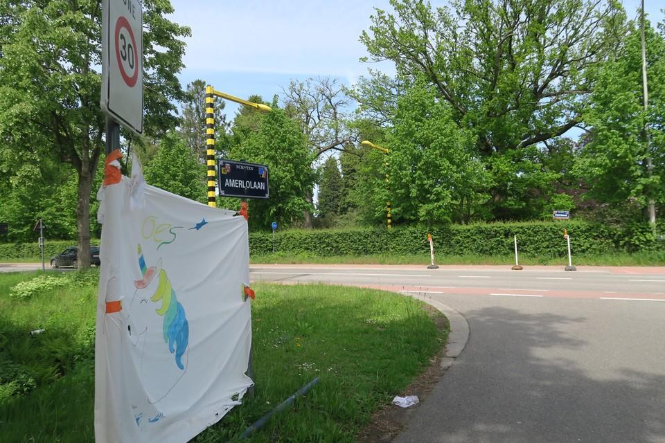 Op deze plek, over de Horstebaan richting Amerlolaan, komt het zebapad. Het spandoek houdt de herinnering aan Loes levend.