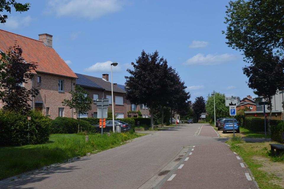De Nierlenderstraat in Broechem. In de achtertuinen werden Vlaamse topvondsten uit de vroege Middeleeuwen gedaan.