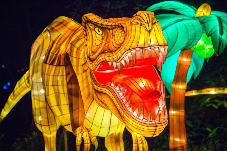 In Planckendael zijn kunstenaars begonnen met de opbouw van de structuren om China Light dit jaar in het teken van dino's te zetten.