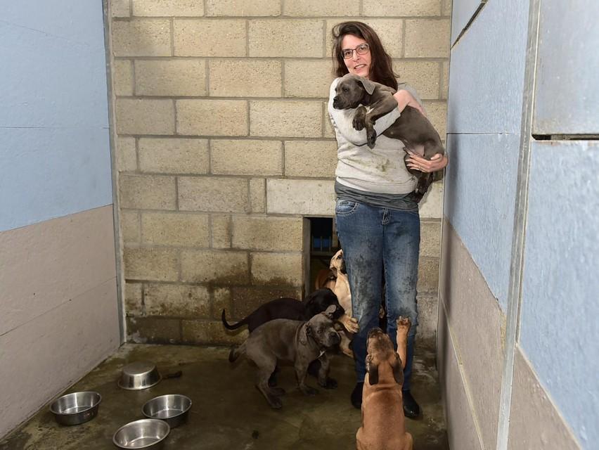 Wendy met een paar van de opgevangen pups.