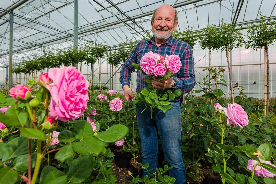 André Casteels leeft al 45 jaar lang tussen de rozen.