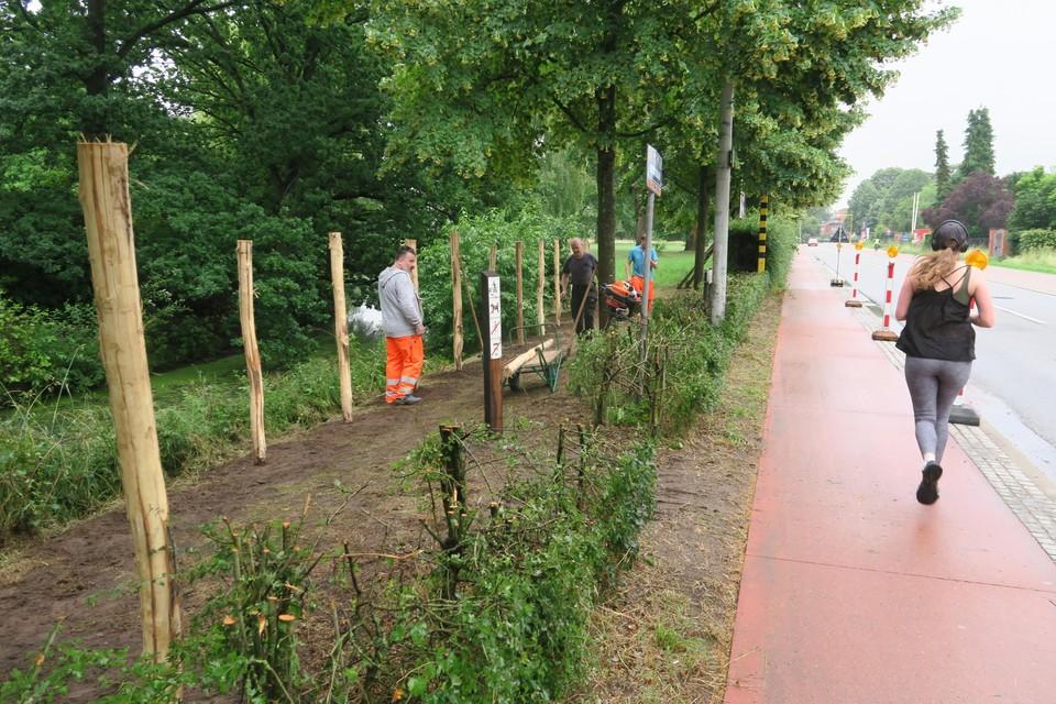 Het nieuwe wandelpad loopt vanaf de historische toegangspoort van het Vordenstinpark naast de Eethuisbeek  tot aan de Horstebaan. De hoge haag werd ter hoogte van de Amerlolaan  gedeeltelijk verwijderd om een wachtzone te creëren voor een nog te schilderen zebrapad.