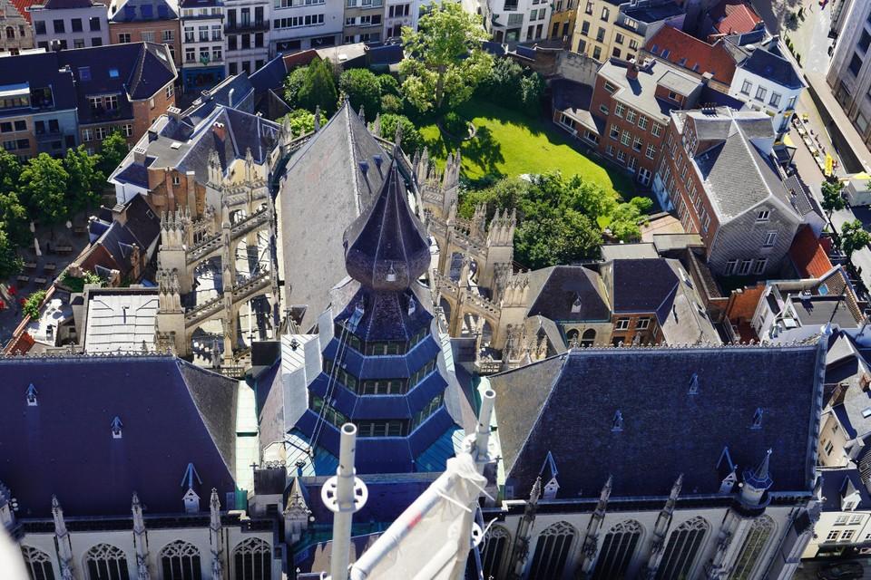 Waar nu de verborgen tuin van de kathedraal is, moest in 1521 het Nieuwe Werck komen dat op enkele pijlers na nooit is uitgevoerd.