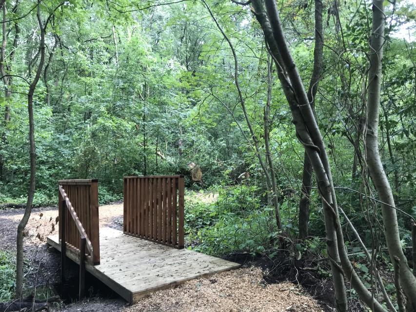 Een bruggetje in het bos.