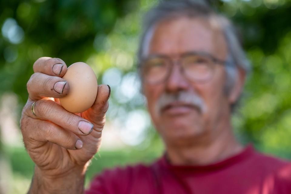 Zwijndrechtenaar Eduard D'Hollander leverde ons eieren van de kippen uit zijn tuin.