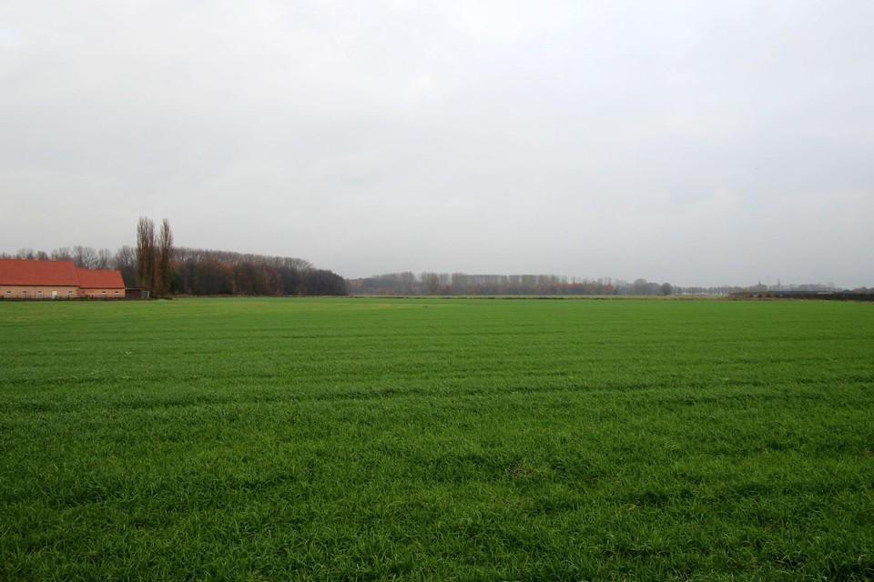 De open ruimte van de Molenbeekvallei blijft belangrijk voor Boechout.