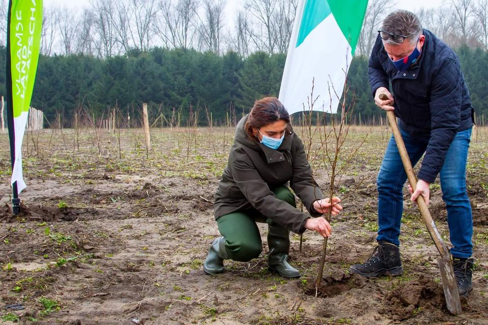 Vlaams minister van Natuur Zuhal Demir (N-VA) en haar voorganger en burgemeester Koen Van den Heuvel (CD&V) plantten zaterdag de eerste boompjes.