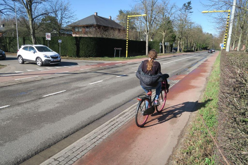 Het meisje de Horstebaan wilde oversteken richting de Amerlolaan, links in beeld.