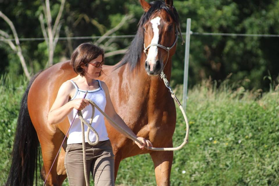 """Eva Van Avermaet met haar zelf gefokte en afgerichte paard Dao. """"Een paard dat met zijn neus helemaal achter de loodlijn loopt, is onnatuurlijk."""""""