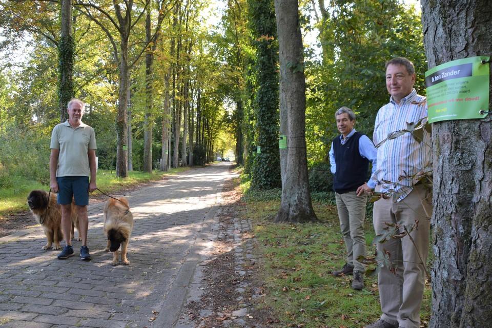 Dirk Verbeke, Kris Versmissen en Dirk Janssens bij boom Zander.