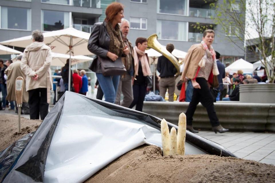Eén van de jaarlijkse activiteiten van het Puurse Aspergefestival is het Aspergedorp.