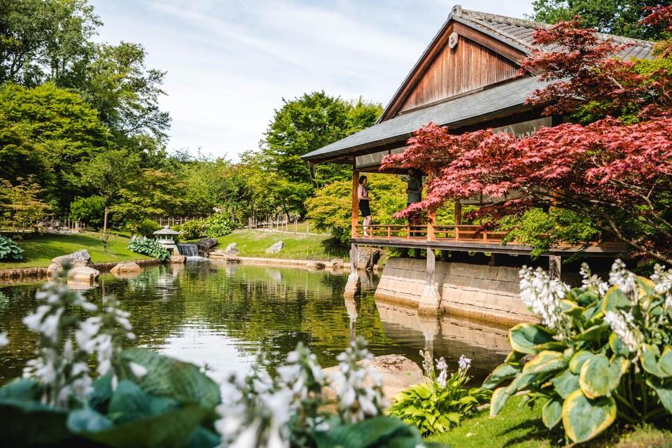 Zicht op het Ceremoniehuis en de yukimi-doro (steenlantaarn).