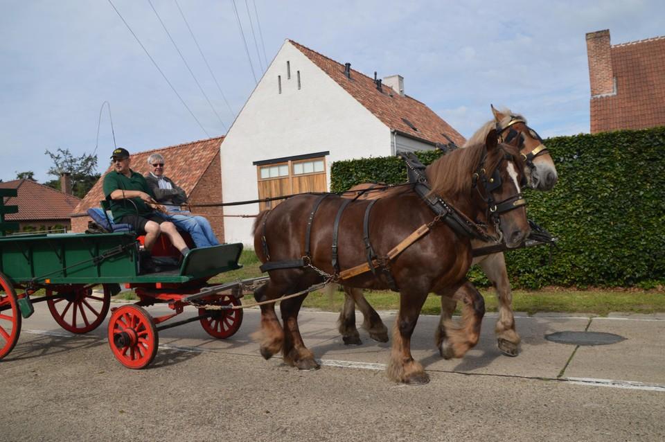 Alle karren hebben houten wielen met ijzeren banden.