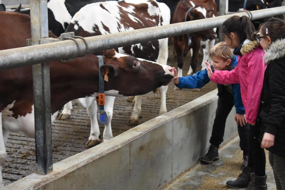 De Breykenshoeve zet de deuren open tijdens De Dag van de Landbouw.