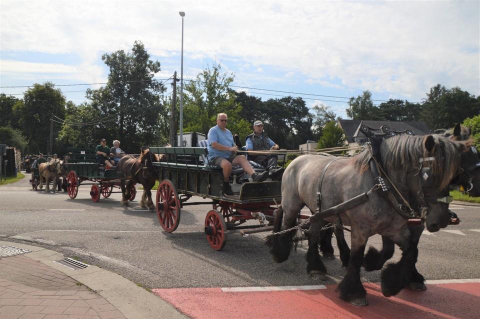 Bij het kruisen van de Langestraat in Zandhoven. Zoals fietsgroepen hebben de menners begeleiders met de fiets bij om het verkeer tegen te houden.