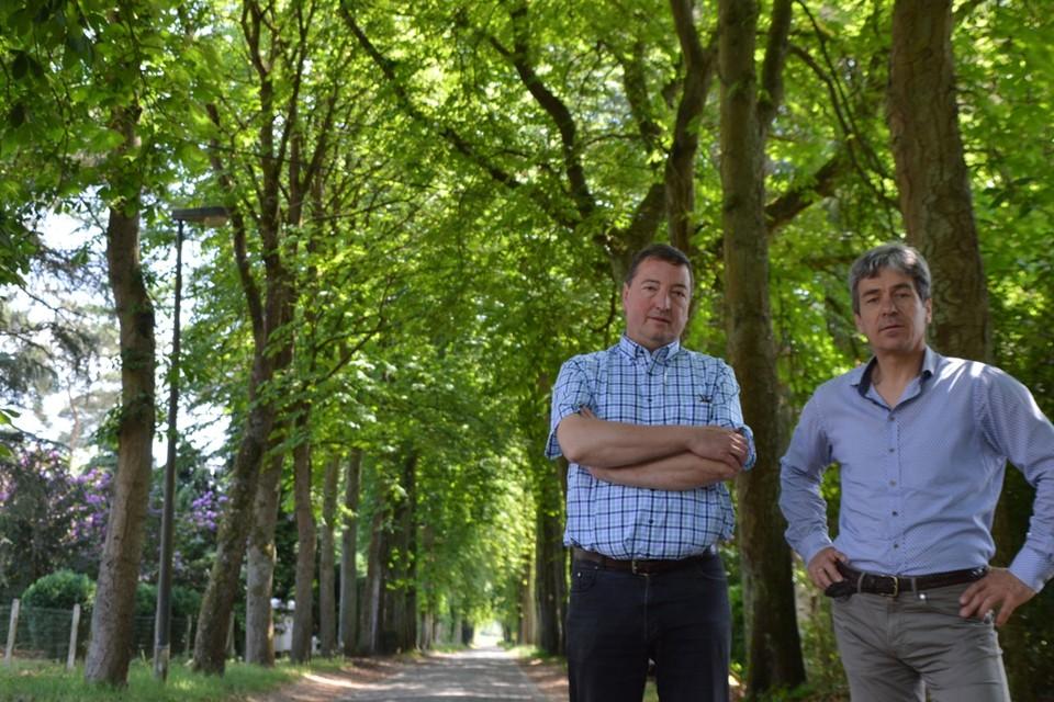 Dirk Janssens en Kris Versmissen in de Mostheuvellaan onder de paardenkastanjes.