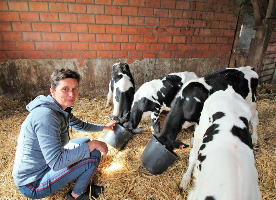 Kinderen leren meer over de boerderij bij Gasthuishoeve Boshoek.