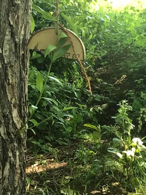 De kapotte boomschijf met het woord 'stilte'.