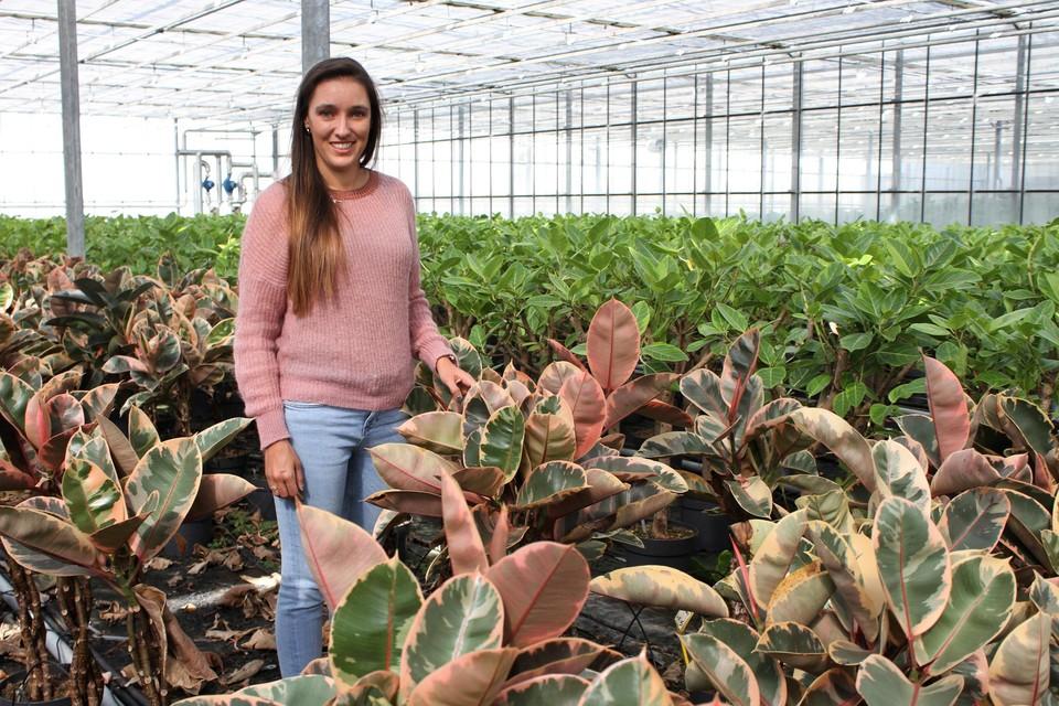 Quirine Peeters in plantenkwekerij Fikona.