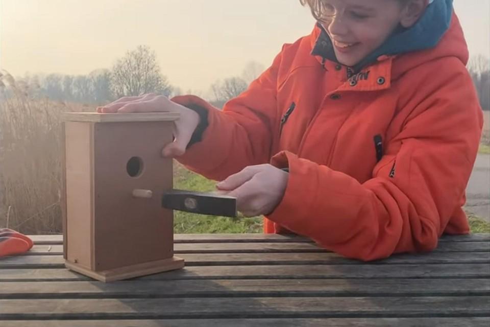 Natuurpunt wil via crowdfunding centen inzamelen om de nestkastjes te bouwen en er een camera in te hangen.