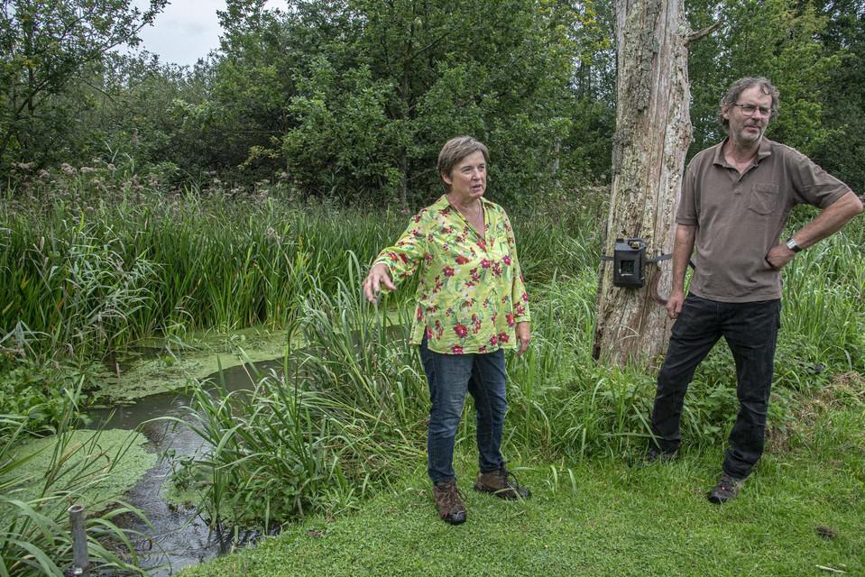 Op deze plek in de tuin van Luc en Jenny worden de bevers dagelijks door een wildcamera gespot.