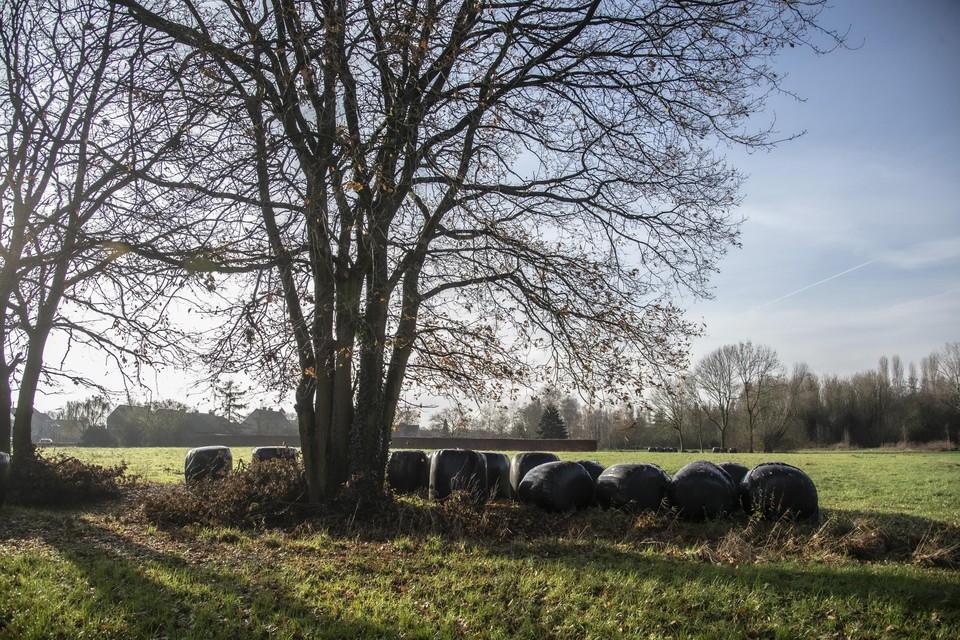 De Aa-vallei in Schorvoort.
