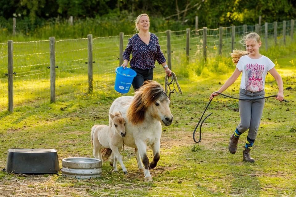 Sandy Costanzo en haar dochter Silke Buren willen alleen het beste voor hun pony's.