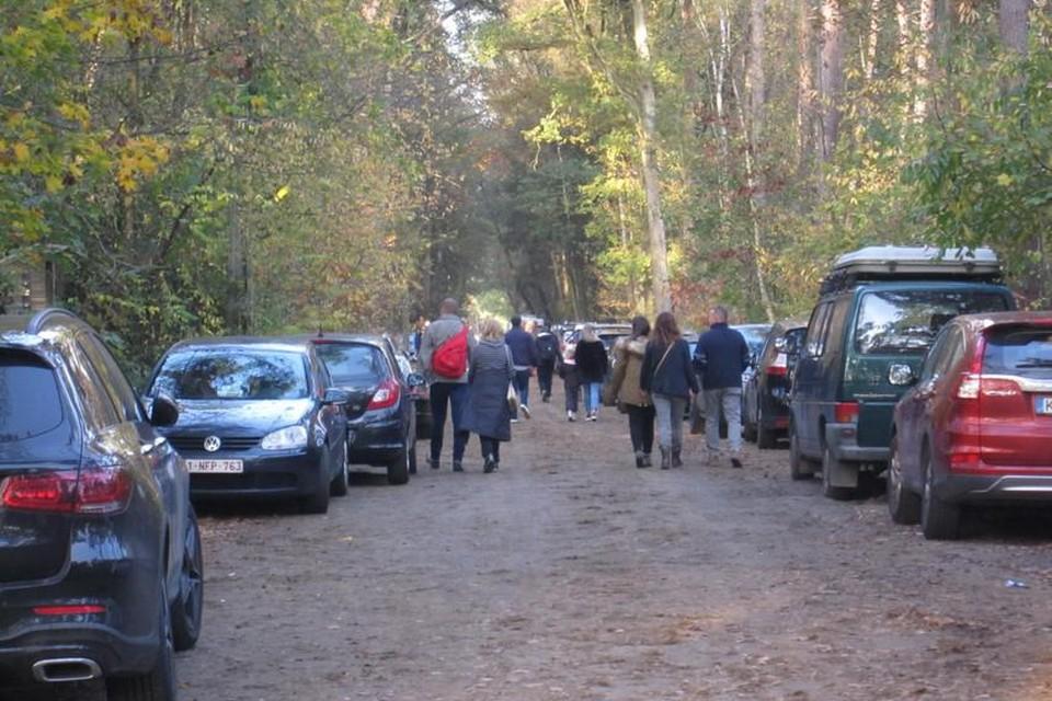 Geparkeerde auto's in de Boskant in Pulderbos vlakbij het vertrekpunt van het Lovenhoekpad op de zonnige zaterdag 7 november.