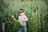 thumbnail: Kleine Staf amuseert zich met het rooien van de worteltjes.