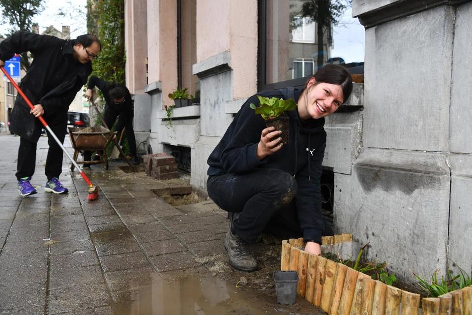 In Borgerhout brak Martha zaterdag tegels uit om bloemen te planten.