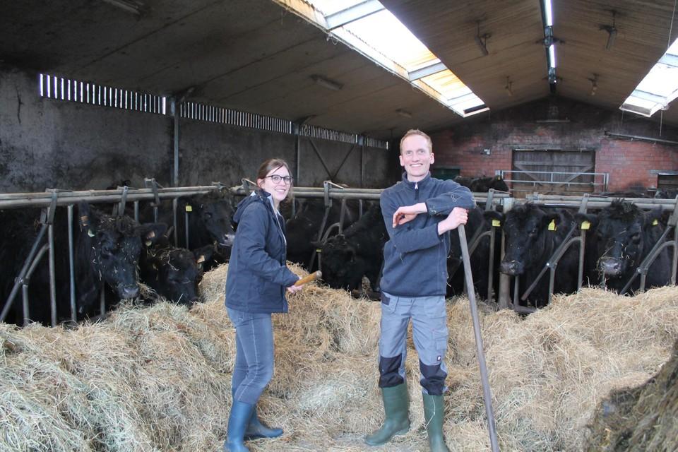 Nele Verheyen en Jeroen Van den Bulck tussen hun Black Angus-runderen.