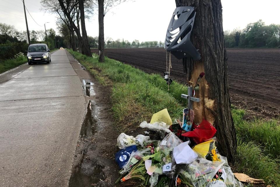 Op Poeyelheide in Lille kwam begin mei Tibau Verelst uit Kasterlee om het leven bij een verkeersongeval. Automobilisten moeten zich daar houden aan een snelheidslimiet van 50 per uur.