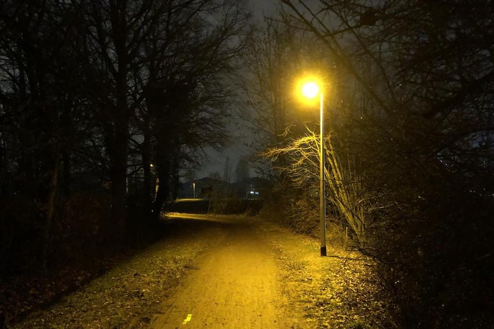 De nieuwe verlichting in de Sneppenbosweg.