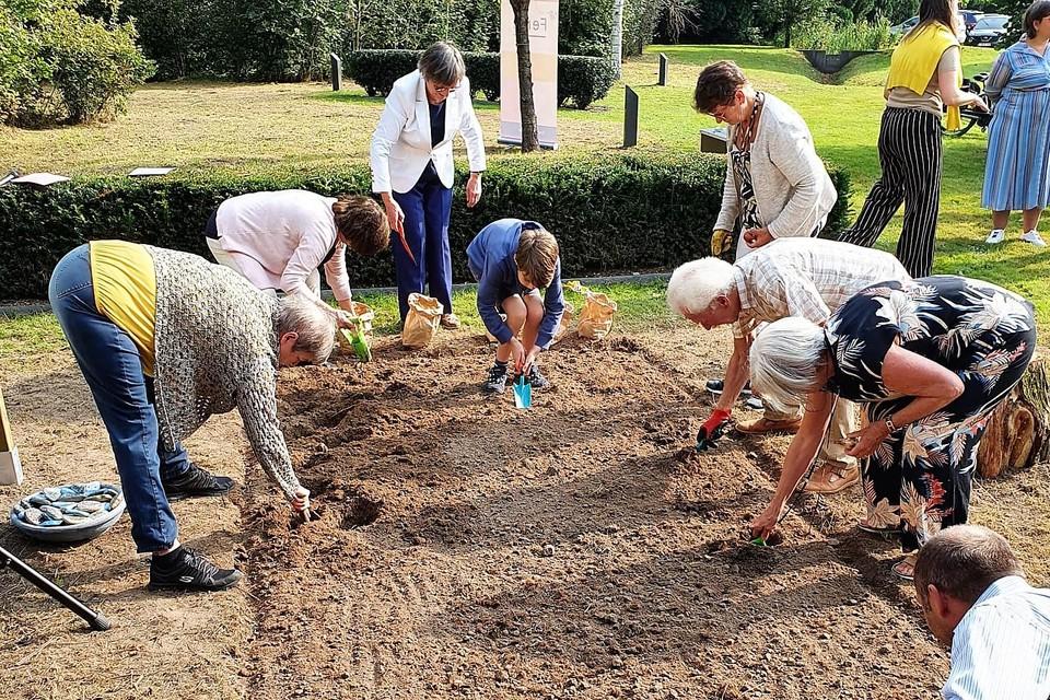 De eerste bloembollen werden meteen geplant in het mini veld.